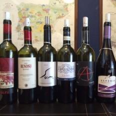 Degustação vinhos italianos